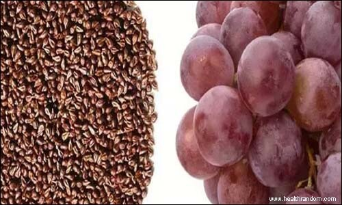 extract grapes seeds