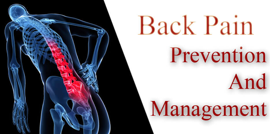 Prevention and Management of Back Pain